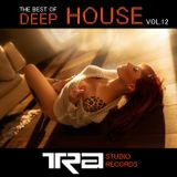 Best of deep house VOL.12