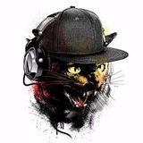DJ BABOO 20.06.2016 Jungle and Rollaz mix