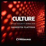 Steve Taylor Ft. Bongo Ben LIVE for iCulture @ Shoreditch Platform 21st April 2018