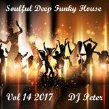 Soulful Deep Funky House Vol 14 2017 - DJ Peter