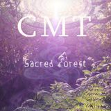Chilled Music Therapy S16 - Sacred Forest