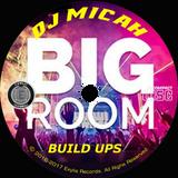 DJ Micah & project Stealth present...  BIG ROOM Build Ups