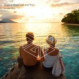 Tropical House mix 2017 Vol.2 ~ Deep and pop / Summer mix ~