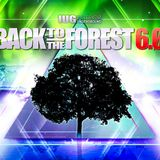 Back to the Forest 2017