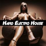 [NEW] JVDS - Big And Bangin' Electro House Mix
