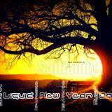 Goa Progressive Psychedelic Dark Trance Music -The Liquid New Year Dance Mix Vol.5