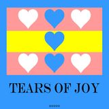 Tears of Joy VI from DJ Longsleeve