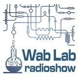 Wab Lab Ice & Slice Experiment 23_8_14_Part 1