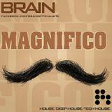 Brain - Magnifico