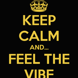 DJ Romie Rome - Feel The Vibe, Vol. 11