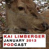 Kai Limberger January Podcast 2013
