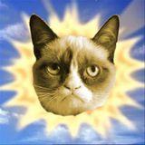 April Promo: Springtime Cat