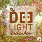 The Deelight Radioshow #3