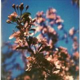 mR_BLACk - Longing For Spring
