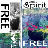 Set Your Spirit Free ✨ August2017 Playlist
