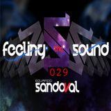 Feeling The Sound 029 (Eduardo Sandova Dj )