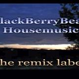 VA_BlackBerryBeatz_Techhouse_Mixset_FunkyDread