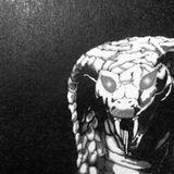 Bye Bye Snake, Hello Horse