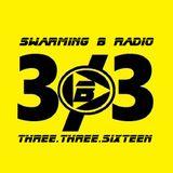 SWARMING B RADIO 2016:  Episode 101 (Three Three)
