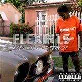 Flexin 1.5