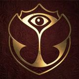 Tomorrowland 15Y Spectacle Day 1