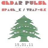Cedar Pulse Live Set Recorded @ Standard Café (Part II)
