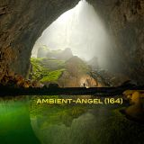 Ambient-Angel (164)