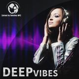 DEEPvibes (mixed by Sanchez MP)