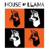 House of Llama 10.10.2018