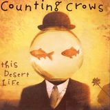 Alternative Rock - Counting Crows pt.2