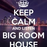 Bigroom Mixset #1