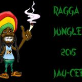 RAGGA JUNGLE 2015 (JAY-CEE)
