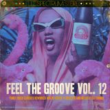 Feel The Groove Vol. 12