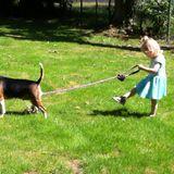 Le Tusch - Take The Dog For A Walk