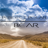 Perfect Polar Bear - Hi, Netsky