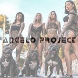 ANGELO PROJECT MIX SHOW #43 (RAP)