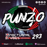 Nocturnal Vibes #293 - Mixed by DJ Punzo