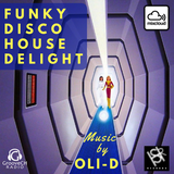 FUNKY DISCO HOUSE DELIGHT
