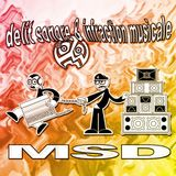 MSD - Delit Sonore & Infraction Musicale (Face B)