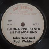 Wishing You A Merry Kiwi Vinyl Christmas