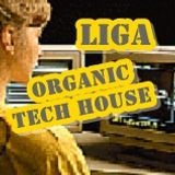 Organic Tech House Mixed By Liga Wolf