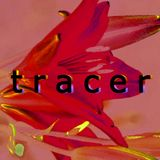 Tracer 30-08-17