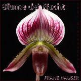Blume der Nacht [diRthOuZeLiVEmiX] by Franz Hauser [105 minutes 100% DirtHouze]