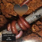 Lurie - Keep Warm