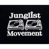 Dj Hovis aka Spaceriderz - Nu-skool jungle mix