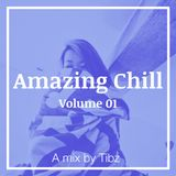 Tibz x Amazing Chill - Volume 01