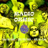 Radio Ozric Mk.2