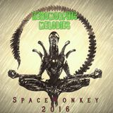 XenoMorphic Melodies  vol. 1:  A deep house enlightenment mixed by the SpaceMonkey