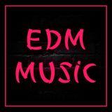 Electro House Mix #028