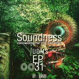 SOUNDNESS ep0031 by: RANDI   sound from ground..!